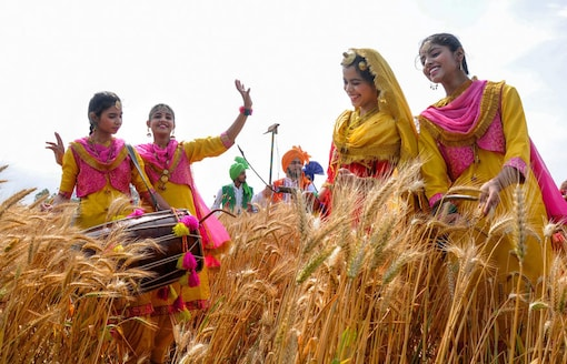 Amritsar: Students, in traditional Punjabi attire, sing folk songs and perform folk dances as they take part in the Vaisakhi celebrations at a wheat field in Amritsar, on Wednesday. (Image: PTI)
