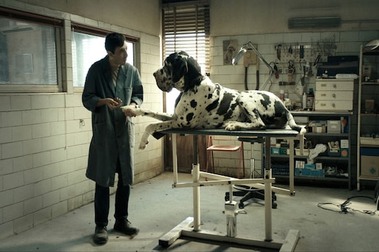 A still from Dogman (Image: AFP Relaxnews)
