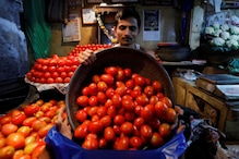 Tomato Prices Rise to Rs 60-70 Per Kg in Most Cities; Paswan Says Due to Lean Period