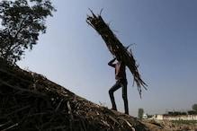 After PM Modi's Promise to Sugarcane Farmers, Akhilesh Says 'Roadshows Won't Help'