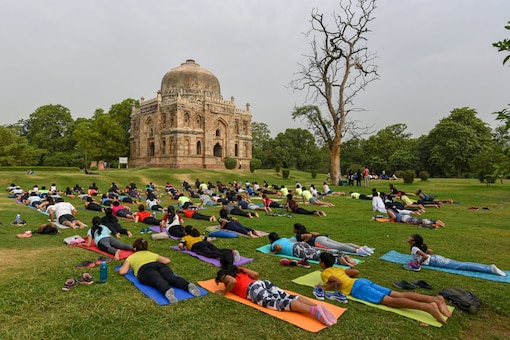 Yoga enthusiasts perform during celebration of the 4th International Day of Yoga at Lodi Gardens, in New Delhi. (Image: PTI)