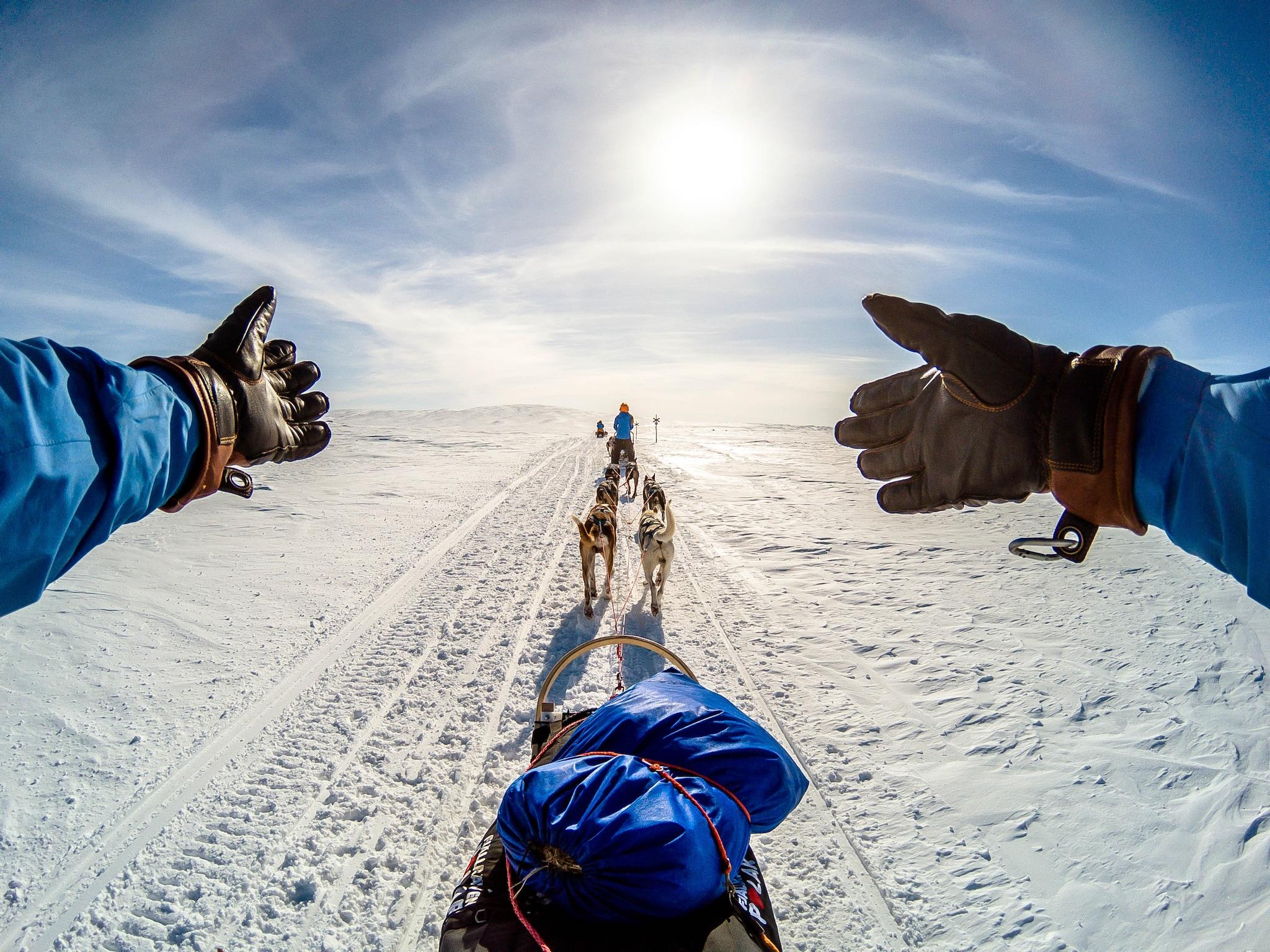 Polar Expedition 1