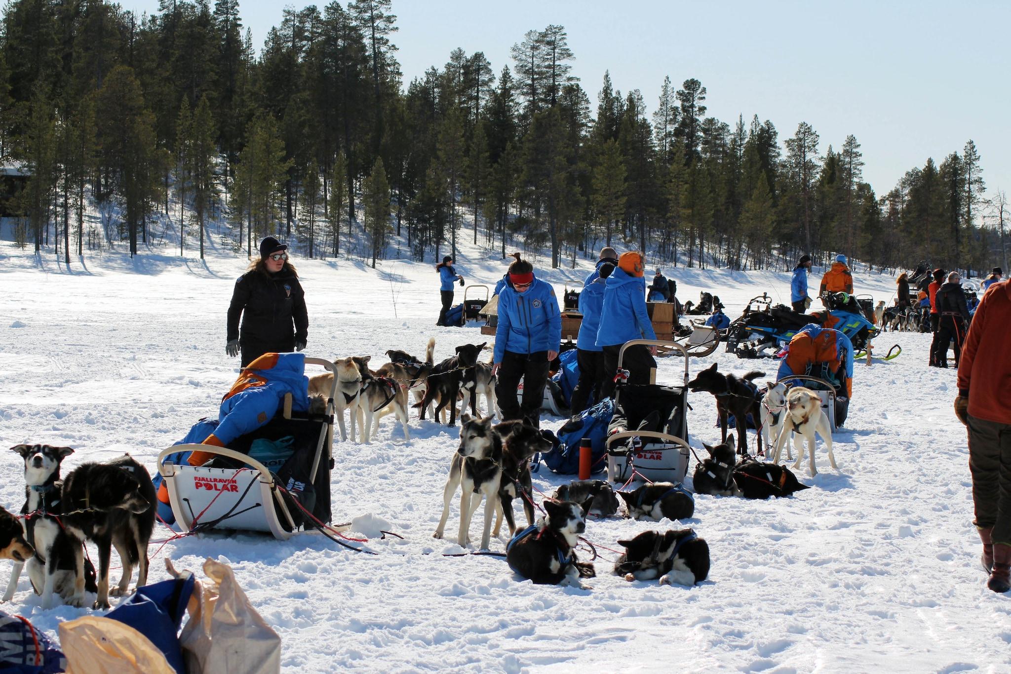 Polar Expedition 3