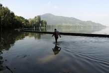 Flood Alert in Kashmir as Rains Continue to Lash Valley, Schools Closed