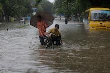Congress Fills Potholes in Mumbai's Bandra Area, Hits Out at BMC
