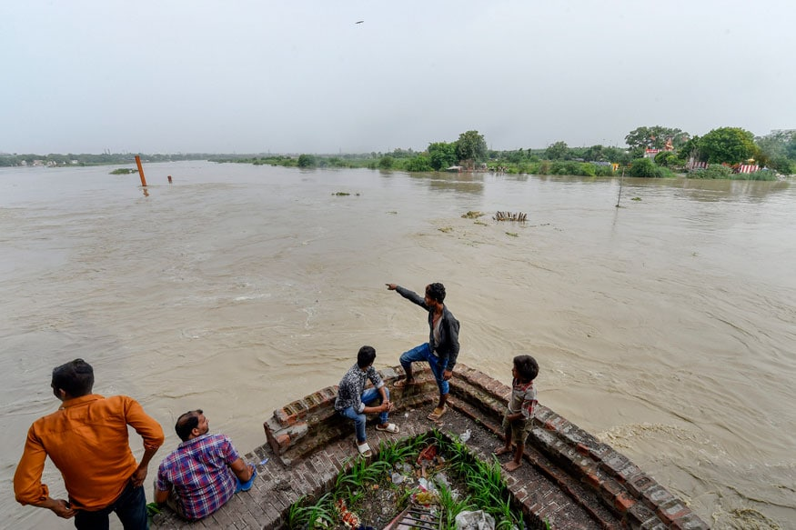 Study Shows Yamuna's Stretch Near Delhi's Wazirabad Barrage Unsuitable for Aquatic Life