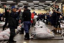 Fish Fry: Japan Heatwave Threatens Famed Tokyo Tuna Auction