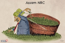 Original Petitioner Assam Public Works Unhappy With 'Flawed' NRC, Questions Software Used