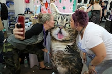 CatCon 2018: California's Largest Cat Convention for Cat Lovers