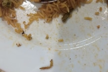 Customer Finds Caterpillar in Vegetable Biryani at IKEA Hyderabad, Store Fined Rs 11,500