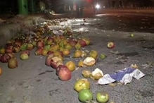 Fruit Vendor Killed, Another Injured as Luxury Car Rams Into His Cart in Delhi's Dwarka