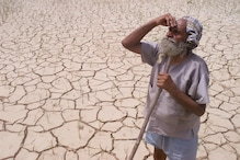 World Day to Combat Desertification And Drought 2020: Date, Theme, History and Significance