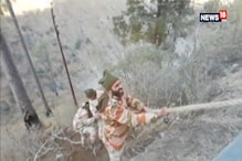 One Killed As Bus Carrying 36 ITBP Personnel Falls Into Gorge In Jammu And Kashmir