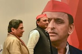 Breakup With Maya Proves to be Elixir for Akhilesh as SP Bags 3 Seats, BSP Fails to Open Account