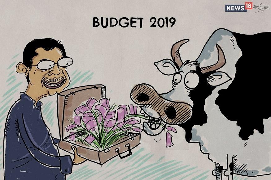 Budget-2019-Cartoon1