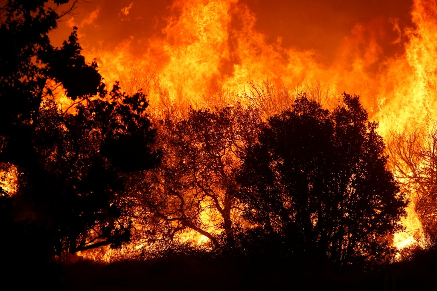 Death Toll in Massive 2018 California Wildfire Revised Down by One to 85