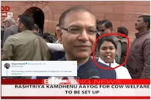 Girl Photobombing Minister Jayant Sinha's Interview is Winning Budget 2019