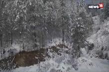 Snowfall Hampers Normal Life In Shimla, Kullu