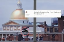Campaign to Remove 'Stupid Rat' From Scorsese's 'The Departed' Has Plagued the Internet