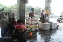 'Govt Doesn't Do Anything But…': What's Making Mumbai's Koli Women Vote Today Despite Skepticism