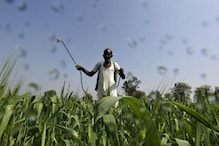 Empty Promises: Both Congress and BJP Have Failed to Pass Critical Bill Protecting Farmers from Pesticides