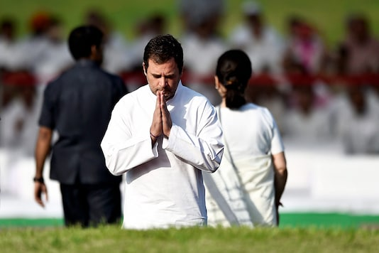 Rahul Gandhi pays tribute to India's first Prime Minister Jawaharlal Nehru on his 55th death anniversary. (Image: PTI)