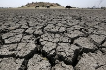 Rajasthan Declares 1,388 Villages in 4 Districts 'Drought-affected'
