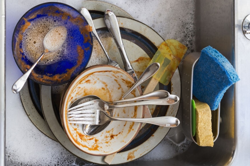 Viruses Found in Kitchen Sponges May Eat Bacteria: Study