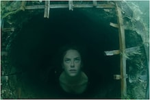 Crawl Movie Review: This Creature Film Delivers Genuinely Thrilling Moments