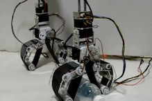 Meet 'Graspman,' The IIT-Madras Robot Whose Grip Is As Good as a Human's
