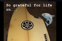 'It Would Have Bit My Toes Off': Surfer Escapes Shark Bite By 'an Inch or Two'