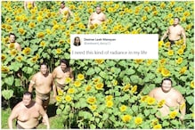 Sunny Photo of Sumo Wrestlers Chilling with Sunflowers is Bringing Netizens 'Pure Bliss'