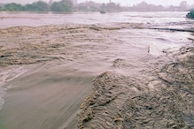 Delhi's Old Iron Bridge Shut as Water Level in Yamuna Rises Further, Kejriwal Says Situation Under Control