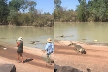 Crocodile Snatches Fish from Anglers in One of Australia's 'Most Dangerous Water Bodies'
