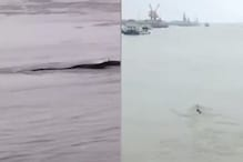 China's 'Loch Ness Monster' Turns Out To Be Nothing But Deflated Airbag