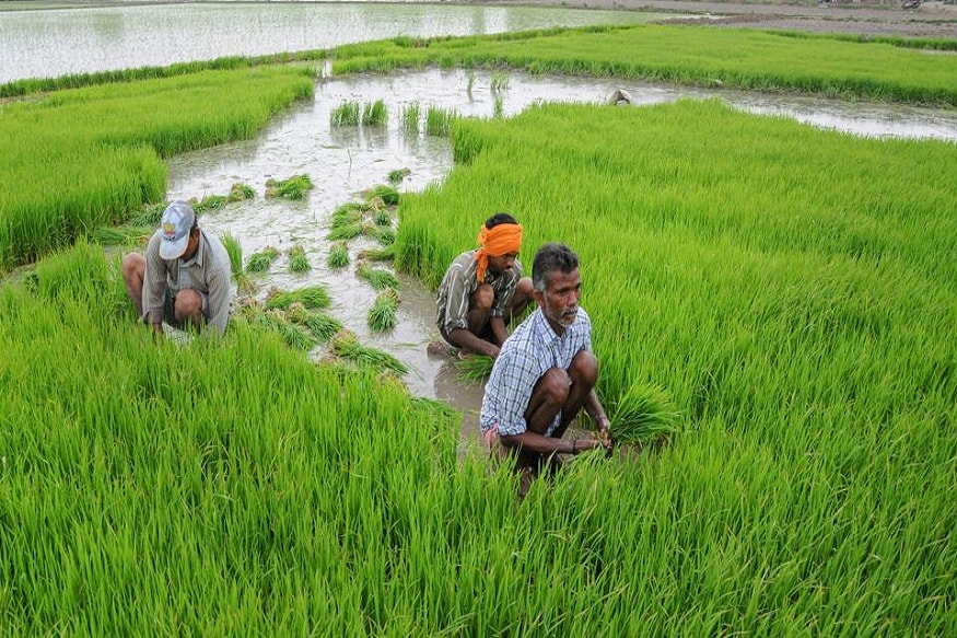 Agriculture Infrastructure Funding Pegged at Rs 1.68 Lakh Crore for 2020-25: Govt Task