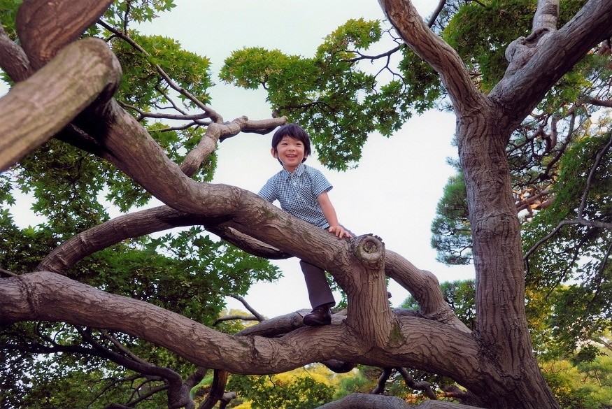 FILE PHOTO: Imperial Household Agency of Japan handout photo shows Japan's Prince Hisahito smiling as he climbs up onto a tree in the Akasaka imperial estate in Tokyo