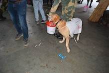 BSF Dog Squad Takes Part in 'Swachh Bharat Abhiyan' to Celebrate Gandhi Jayanti