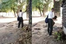 Man Caught Stealing Plant Pots from Delhi's Vertical Garden Apologises After Outcry