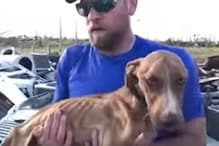 'Miracle' Dog Rescued From Rubble a Month After Hurricane Dorian