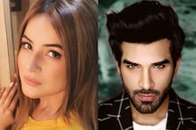 After Bigg Boss 13, Shehnaz Gill and Paras Chhabra to Find Suitable Partners via New Reality Show