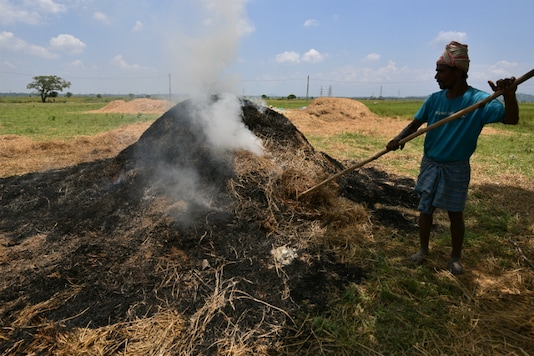 File photo of a farmer burning waste paddy stubble in a field. (Photo: Reuters)