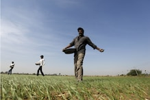 Govt Disburses Rs 18,253 Crore to 9.13 Crore Farmers Under PM-KISAN Scheme During Lockdown
