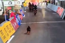 Over-Enthusiastic Doggo Gatecrashes Cycling Competition, Emerges as a Clear Winner