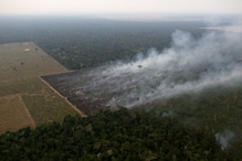 Amazon Rainforest Has Lost Forest Cover Equivalent of 8.4 Million Football Fields in Just 10 Years