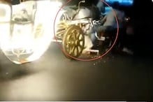 Watch: Bike Rider Comes Under Wheels While Trying to Stop Horse Carriage Gone Out of Control
