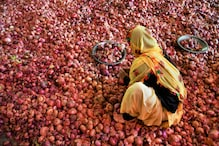 Zooming Onion Prices Raise Stagflation Stink Amid Slumping Growth, High Unemployment