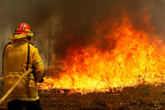 Firefighters work to contain a bushfire in Australia. (Image: AP)