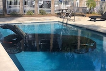 Internet Cannot Keep Calm After Photos of Car Submerged in Florida's Hotel Pool Go Viral