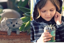 Six-Year-Old Makes Clay Koalas to Collect Money for Australia Bushfire Relief Fund